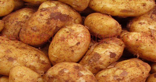 Patateste kahreden tablo!