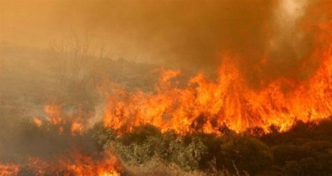Güney'de iki ormanlık alanda yangın