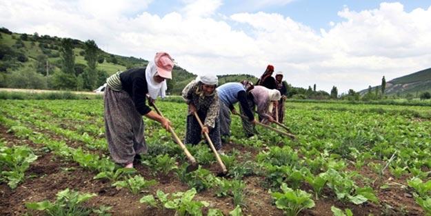 Mevsimlik işçiler ülkelerine dönüyor